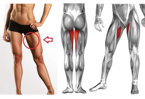 12 Minute Leg Workout that will Reduce your Thigh Fat in Just 1 Week