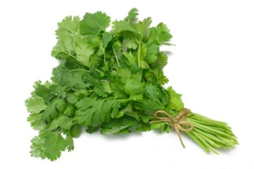 9 Extraordinary Health Benefits From Cilantro
