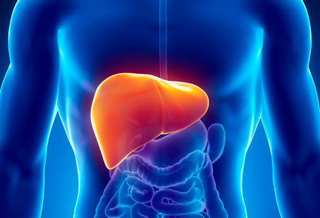 Detox Your Liver in a Natural Way