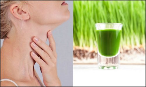A Way How to Heal your Thyroid Naturally!