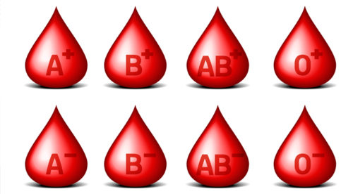 What you Need to Know About your Blood Type