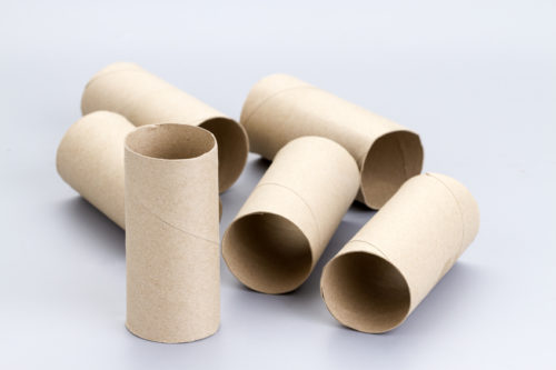 Stop Throwing Away Empty Toilet Paper Rolls