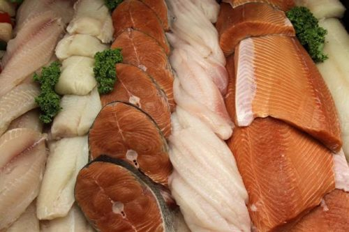 Eating this Fish Can be Very Dangerous For your Health