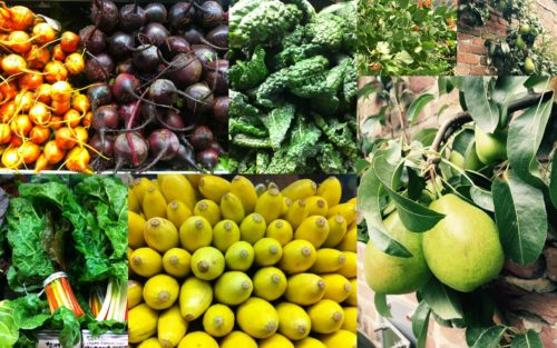 These 20 Fruits and Veggies are the Best Option For you