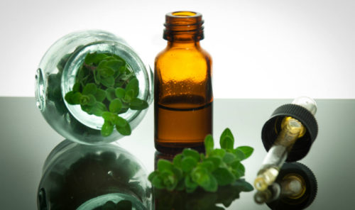 Oregano Oil Can Replace your Antibiotics, Without Side Effects!