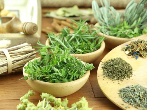 These Are the Best Herbs for Your Body
